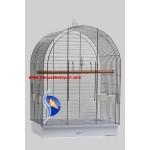 Büyük Papağan Kafesi