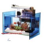 Ocean Cube Aquarium