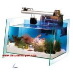 Ocean Wave Aquarium