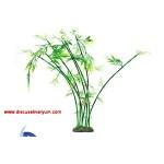 Bambu Ağacı (60 cm)