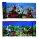 Bitkili - Mercanlı 40 cm Arka Fon