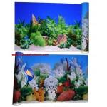 Bitkili - Mercanlı 50 cm Arka Fon
