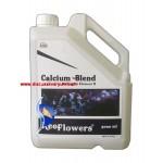 Calcium Blend (BallingSet Element 2 - 3000 ml)