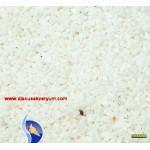 Beyaz Kristal Kuvars - Orta (DAK81)