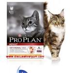 Adult (Yetişkin kediler için Tavuklu ve Pirinçli mama - 10 Kg)