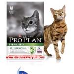 Sterilised (Kısırlaştırılmış Kediler İçin Somonlu Ton Balıklı - 1.5 Kg)